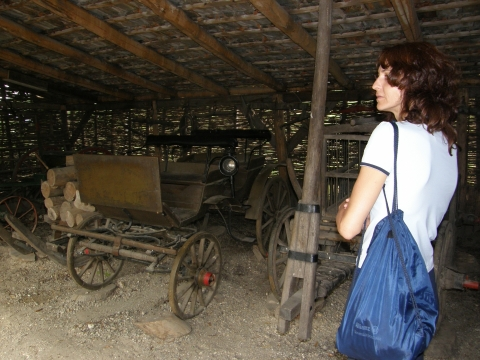 Water Wheel Mill and attractions on the little Danube